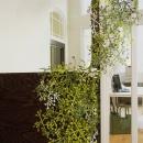 Element dekoracyjny Koziol Cherrie oliwkowy