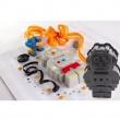 Forma na ciasto/tort Pavoni robot FRT173GRS