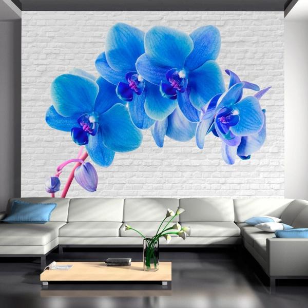Fototapeta - Błękitne pobudzenie (300x210 cm) A0-XXLNEW010393