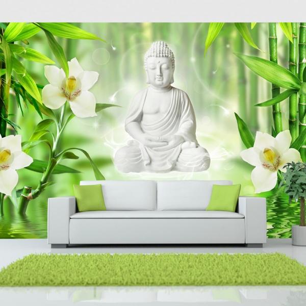 Fototapeta - Budda i natura (300x210 cm) A0-XXLNEW010851