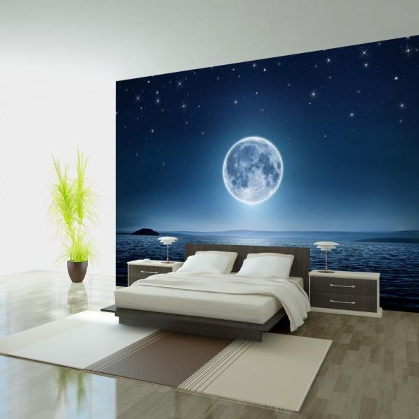 Fototapeta - Księżycowa noc (300x210 cm) A0-XXLNEW010826