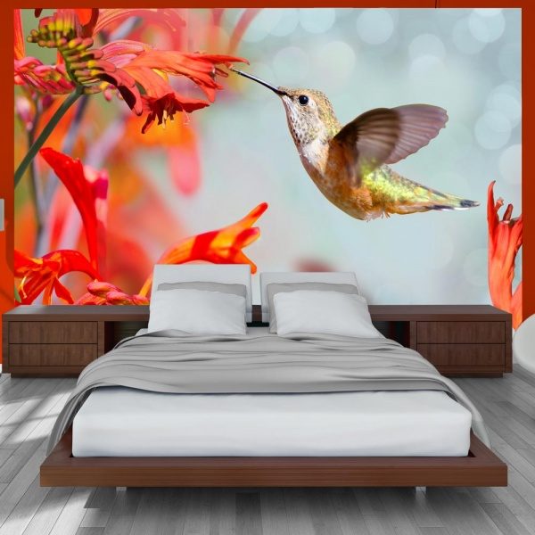 Fototapeta - Lot kolibra (300x210 cm) A0-XXLNEW010356