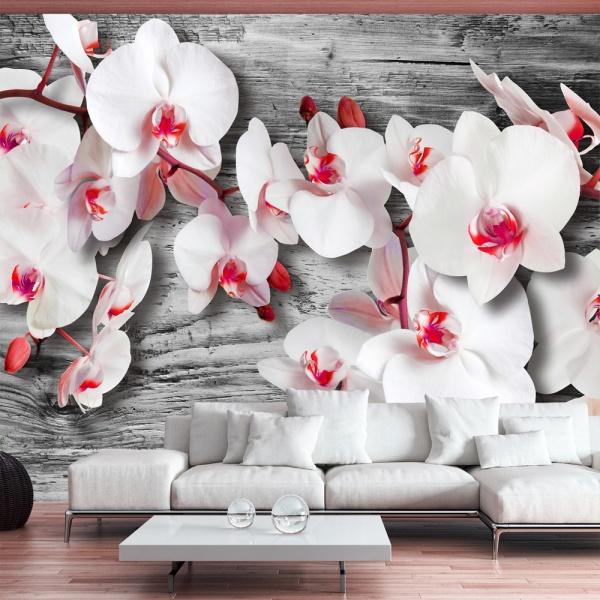 Fototapeta - Oziębłe orchidee (300x210 cm) A0-XXLNEW010223