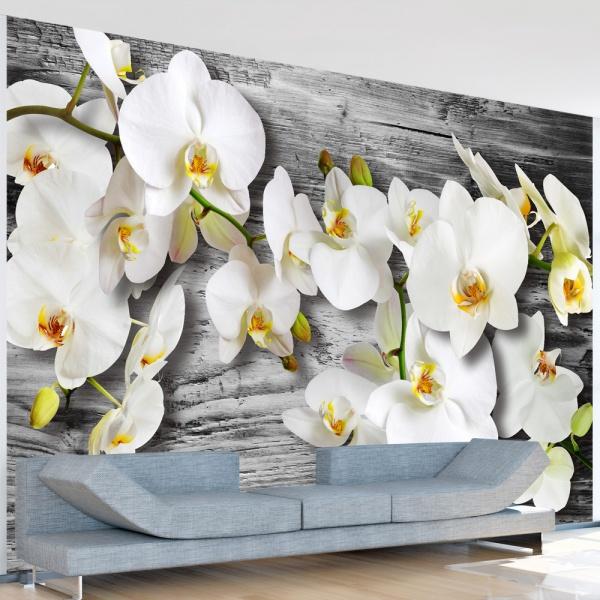 Fototapeta - Oziębłe orchidee III (300x210 cm) A0-XXLNEW010224