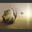 Fototapeta - pustynia - motyw abstrakcyjny A0-F5TNT0029-P