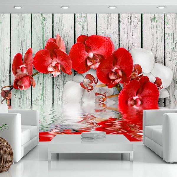 Fototapeta - Rubinowa orchidea (300x210 cm) A0-XXLNEW010121