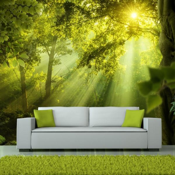 Fototapeta - W tajemniczym lesie (300x210 cm) A0-XXLNEW011429