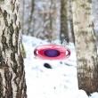 Karmnik dla ptaków Koziol Pi:p czerwono-fioletowy KZ-2018104
