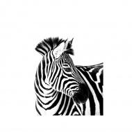 KOC ANIMALS 150X200CM ZEBRA 3D