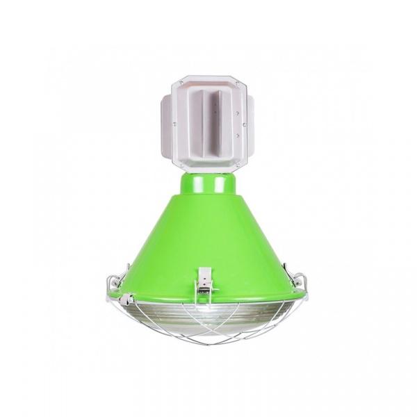 Lampa D2 Sroka połysk groszkowa DK-64862
