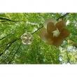 Lampa wisząca Bloom od Blue Marmalade BM008_W