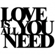 LOVE IS ALL YOU NEED LIAYN1-1