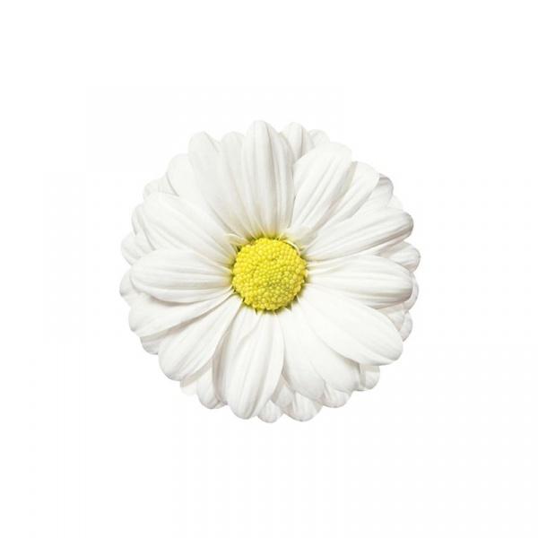 Mata na stół 35 cm Nuova R2S Easy Life biały gerber T22211