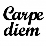 Napis 3D na ścianę DekoSign CARPE DIEM czarny