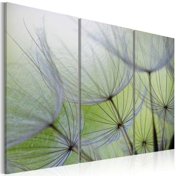 Obraz - (60x40 cm) A0-N2879
