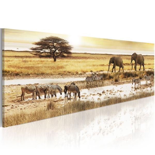 Obraz - Afryka: przy wodopoju (120x40 cm) A0-N3099