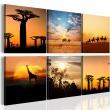 Obraz - Afrykańskie pejzaże A0-N1786