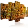 Obraz - Aleja pośród kolorowych liści A0-N1584