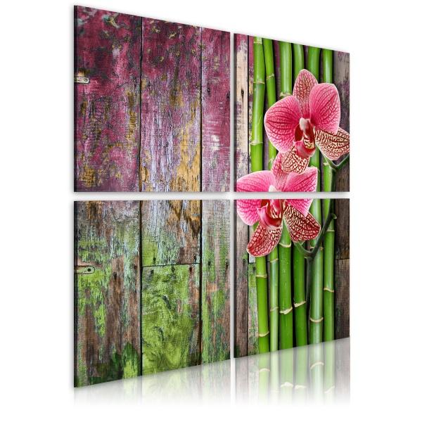 Obraz - Bambus i orchidea (40x40 cm) A0-N1969