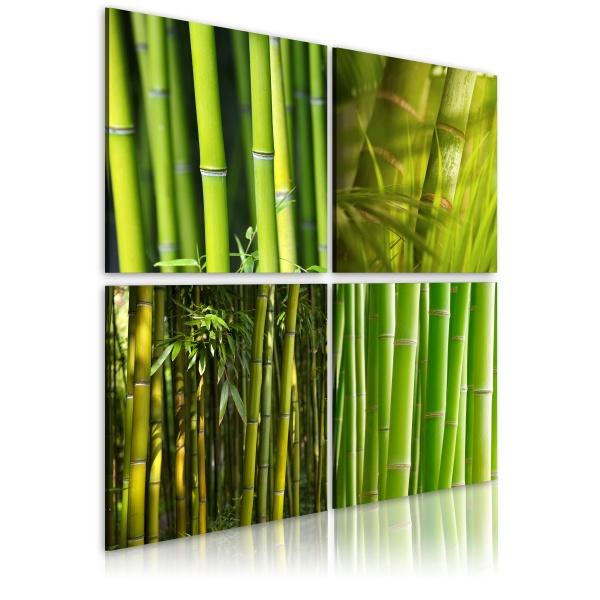 Obraz - Bambusy (40x40 cm) A0-N1928