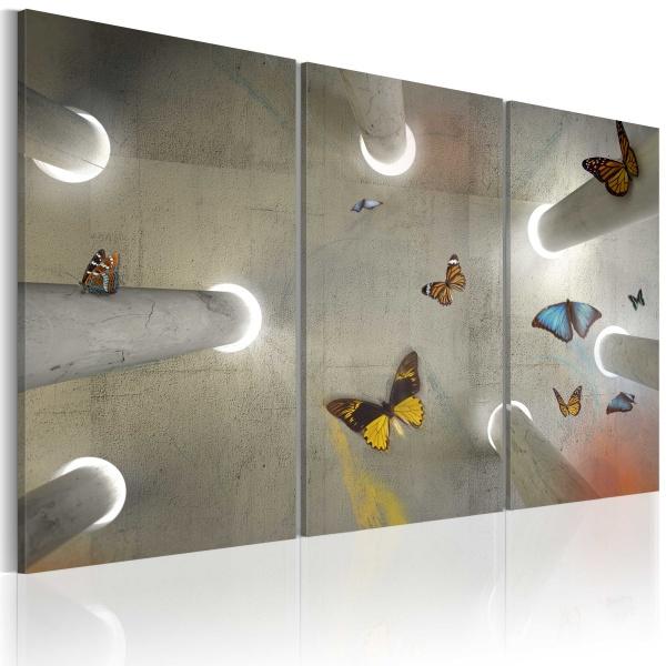 Obraz - Be free... (60x40 cm) A0-N2410