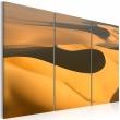 Obraz - Bezkresne piaski pustyni A0-N1467
