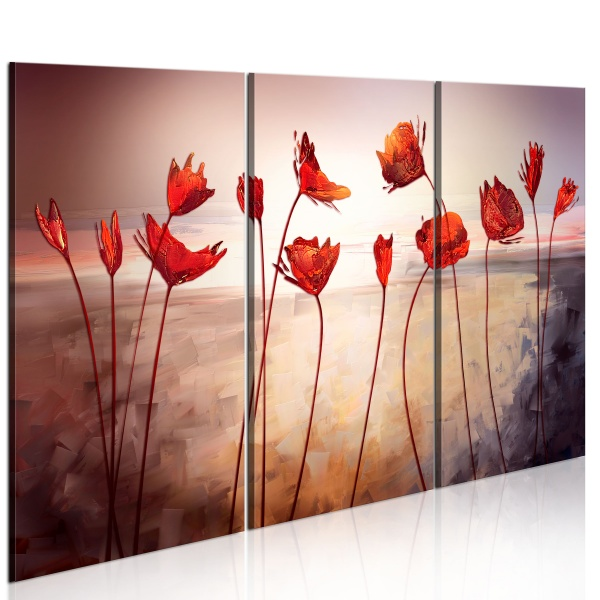 Obraz - Bright red poppies (60x40 cm) A0-N2613