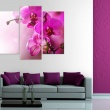 Obraz - Ciemnoróżowa orchidea A0-N1422
