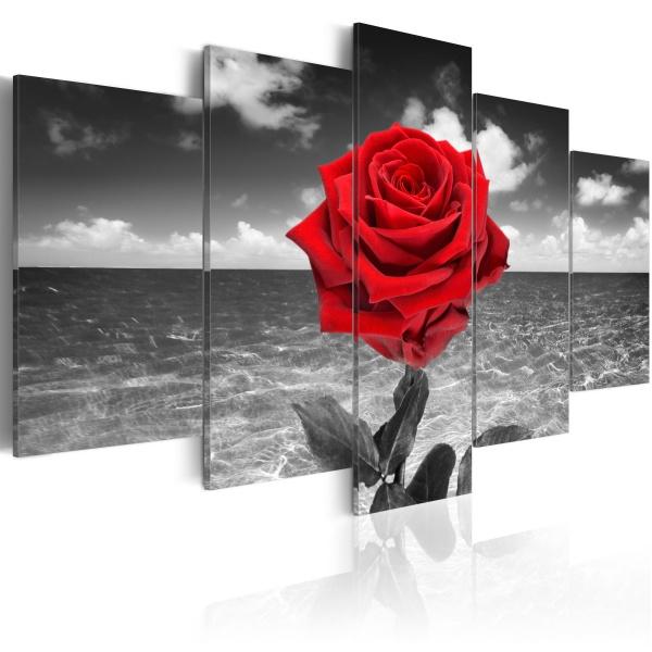Obraz - Colour of love (100x50 cm) A0-N2948