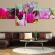 Obraz - Czar różowych tulipanów A0-N1417