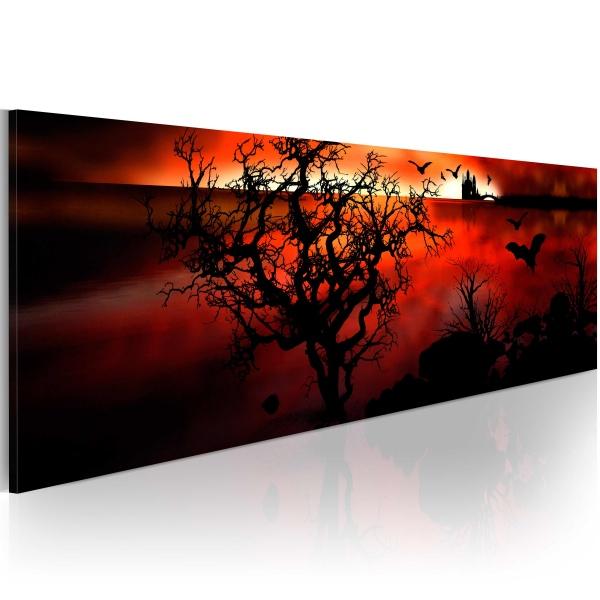 Obraz - Czarne mokradła (120x40 cm) A0-N2646-P