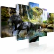 Obraz - Czarny rumak na tle rajskiego wodospadu A0-N1664