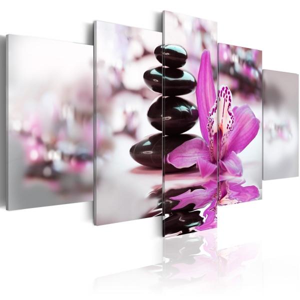 Obraz - Czystość i piękno (100x50 cm) A0-N2579