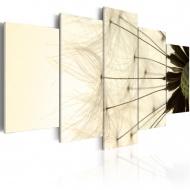 Obraz - Delikatne płatki dmuchawca (100x50 cm)