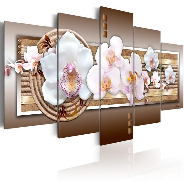Obraz - Delikatność orchidei (100x50 cm) A0-N2800
