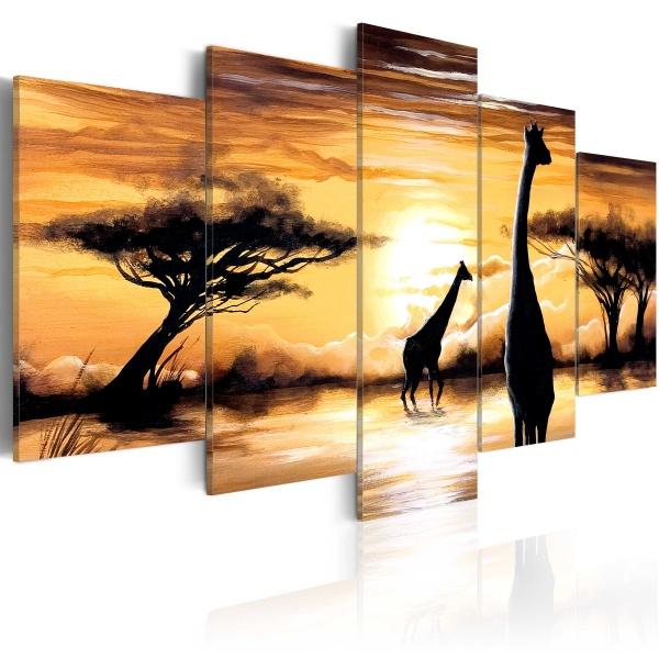 Obraz - Dzika Afryka (100x50 cm) A0-N3365