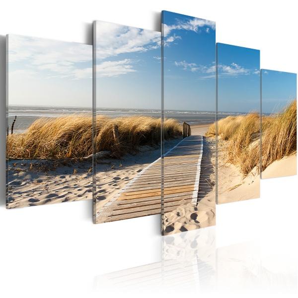 Obraz - Dzika plaża - 5 części (100x50 cm) A0-N2466