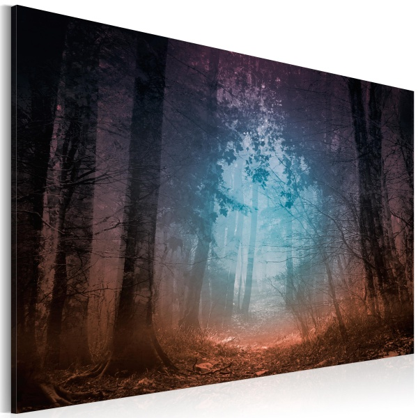 Obraz - Edge of the forest (60x40 cm) A0-N2544