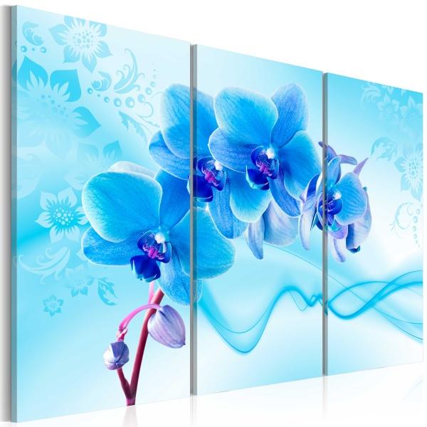 Obraz - Eteryczna orchidea - błękit (60x40 cm) A0-N2978