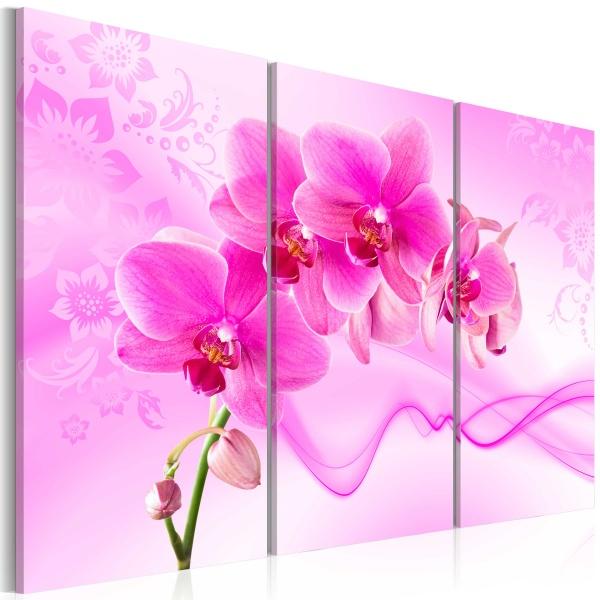 Obraz - Eteryczna orchidea - róż (60x40 cm) A0-N2976