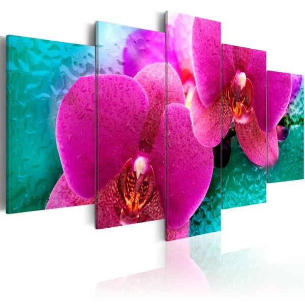Obraz - Exotic orchids (100x50 cm) A0-N2354