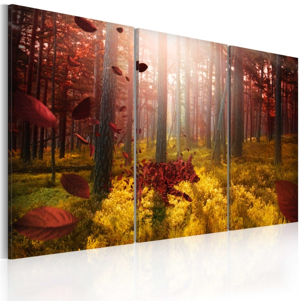 Obraz - Forest miracle (60x40 cm) A0-N2340
