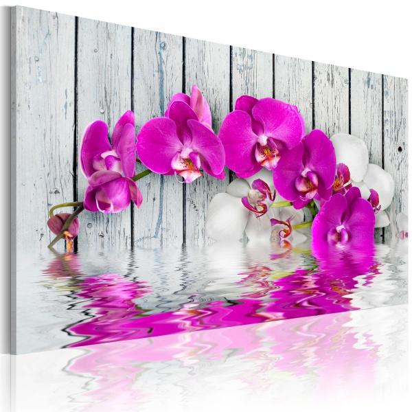 Obraz - harmonia: orchidea (60x40 cm) A0-N2243