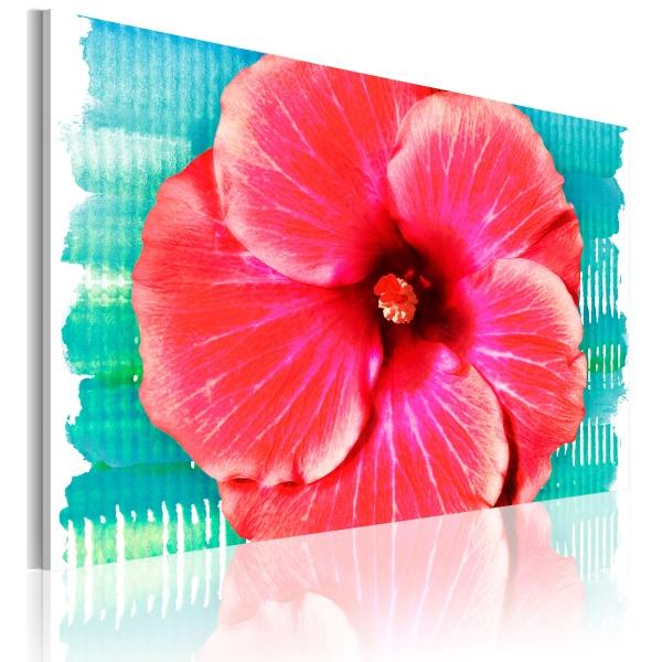 Obraz - Hawaiian flower (60x40 cm) A0-N2242