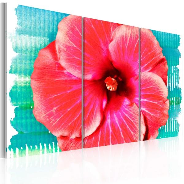 Obraz - Hawaiian flower - triptych (60x40 cm) A0-N2249
