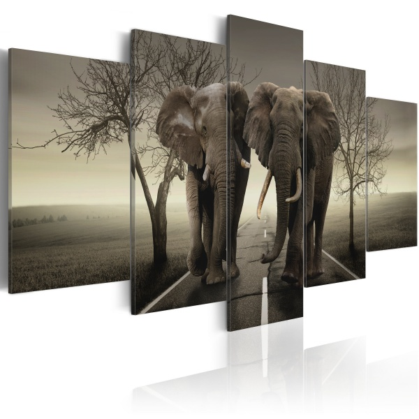 Obraz - It's a wild World! (100x50 cm) A0-N2428