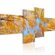 Obraz - Jesień w oczach krasnala A0-N1471