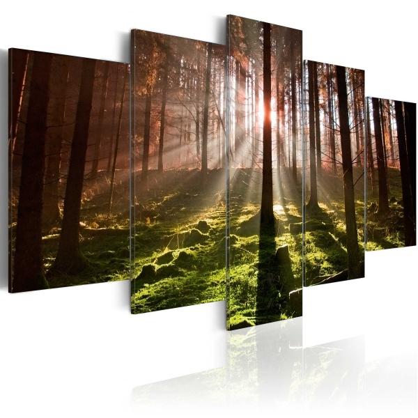 Obraz - Jesienna cisza (100x50 cm) A0-N2996