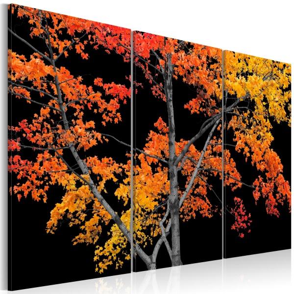 Obraz - Jesienna zaduma (60x40 cm) A0-N2988