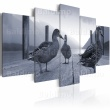 Obraz - Kaczki na molo A0-N1530